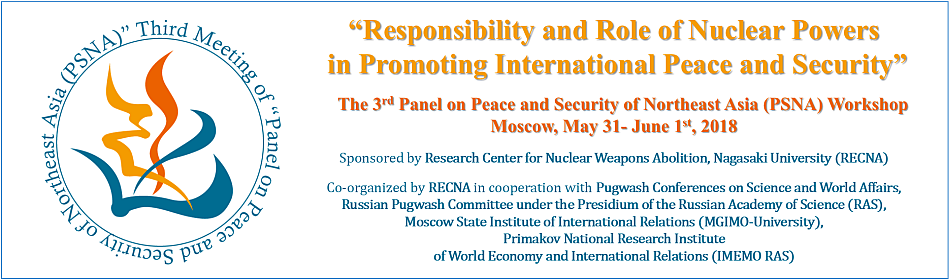 psna the 3rd panel on peace and security of northeast asia psna